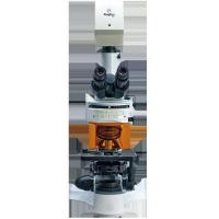 Buy cheap Biological Microscope from wholesalers