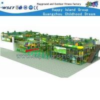 Multifunctional Guangzhou Professiona Indoor Playgrounds (clnz-wi)