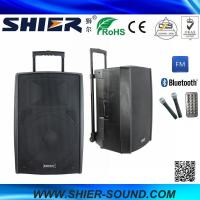 15 Inch 65W Class AB AK15-308 Best Trolley Rechargeable USB Speakers For Dancing