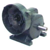 Buy Inch Worm Gear Reducer at wholesale prices