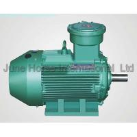 China IEC Low-voltage Electric Motors Flameproof Motor ExdIICT4 IE2/Eff1 on sale