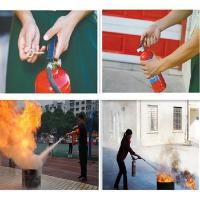 Quality Safety Portable Dry Chemical Powder Fire Extinguisher for sale