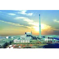 Public Works Zhongzhou Thermal Power Station of China Aluminium Corporation (CHALCO) for sale