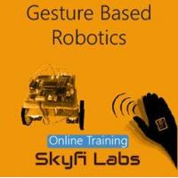 Quality Online Courses Gesture Based Robotics Online Project based Course for sale