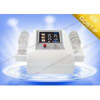 Mini Lipo Laser Slimming Machine For Fat Reduction with 10 Paddle , multi language for sale