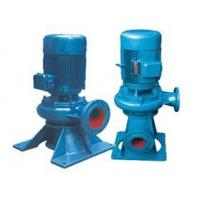LW Vertical Sewage Pump efficiently without blocking for sale