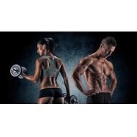 Buy cheap Follistatin powder for gain muscle mass from wholesalers