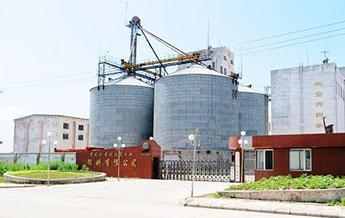 China blog cattle feed making plant animal feed pellet machine