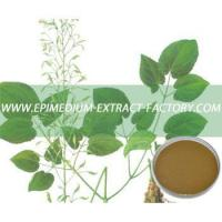 Buy cheap Epimedium Extract Plant Source Latin  N/A from wholesalers