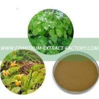 Quality Free Samples Yin Yang Huo Extract, Epimedium Brevicornum Extract for Supplement for sale