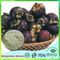 Quality Mangosteen Fruit Extract for sale
