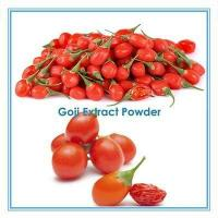 Chinese Factory Supply Wolfberry Fruit Powder