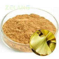 Quality Ginkgo Biloba Extract 24:6 Normal for sale