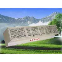 RM Cross-flow A type electric warm air curtain
