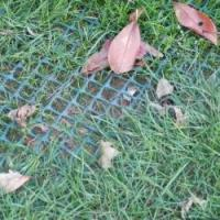 Buy cheap Plastic Mesh Grass Protection Plastic Net from wholesalers