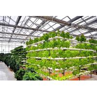 greenhouse: Cultivation Greenhouse