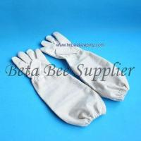 Quality Bee protective gloves for sale