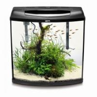 Quality Pearl Aquarium Set for sale