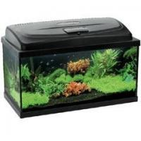 Quality Aquarium Kit 80 for sale