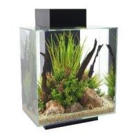 Fluval Edge 46 Ltr Aquarium Black (Now with FREE Heater Included)