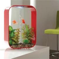 Quality 259.99 Biorb Life Portrt 60 Litre Red for sale