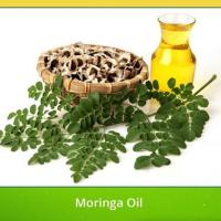 Buy cheap Essential Oil Skin Care Moisturizing Moringa Oil from wholesalers