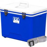 Quality Compact Series Ice Box 28L White-Blue for sale