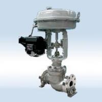 Cage-guided Control Valve