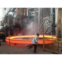 Quality Forging ring Gr2 Titanium Ring For Machine for Tiaret for sale