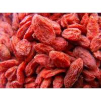 Buy cheap Dried herbs Dried Godji Berry fruit from wholesalers