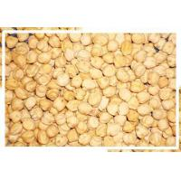 Quality Chick peas for sale