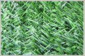 Buy cheap Hedge 1 from wholesalers