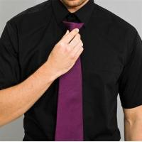 Quality Clothing Colours fashion clip tie for sale