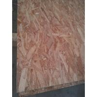 Film faced plywood OSB (ORIENTED STANDARD BOARD )