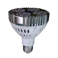 Buy cheap LED Grille Lamp RP-102-PAR30 from wholesalers
