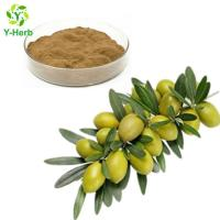 Buy cheap Olive Leaf Extract Oleuropein Powder from wholesalers