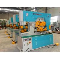 Quality Q35Y Series Hydraulic Ironworker for sale