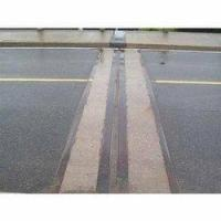 China EXPANSION JOINT COVER SYSTEM MIGUA for sale